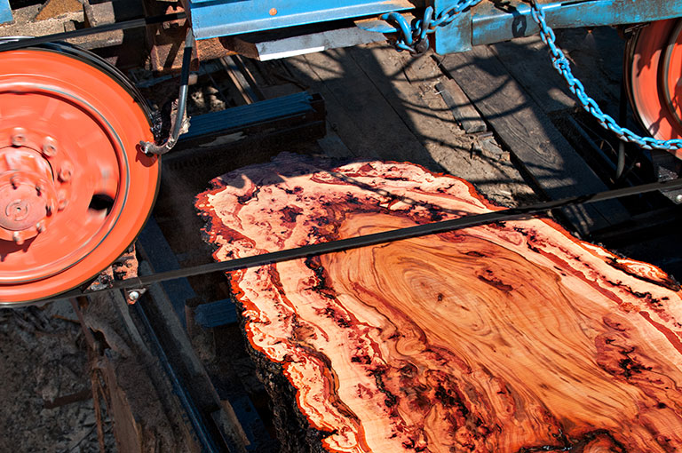 The Blakely Burl Tree Project Story The Sawmill